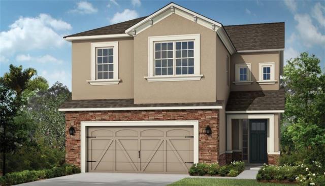 8910 Arabella Lane, Seminole, FL 33777 (MLS #A4403611) :: Burwell Real Estate