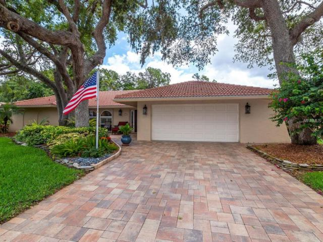 1415 Seafarer Drive Drive, Osprey, FL 34229 (MLS #A4403953) :: White Sands Realty Group