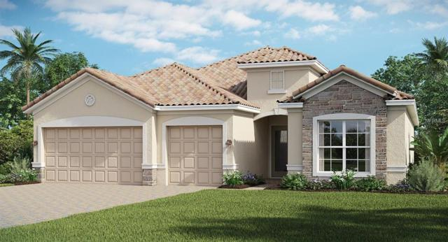 11509 11TH Avenue E, Bradenton, FL 34212 (MLS #A4404046) :: Revolution Real Estate