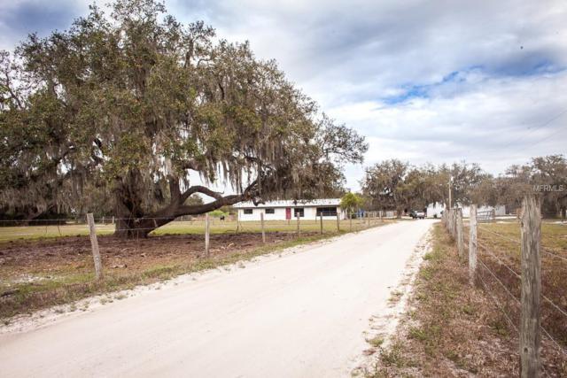 7155 Wauchula Road, Myakka City, FL 34251 (MLS #A4404216) :: Medway Realty