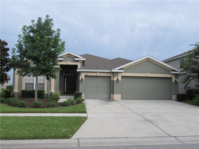 10056 Celtic Ash Drive, Ruskin, FL 33573 (MLS #A4404237) :: The Duncan Duo Team