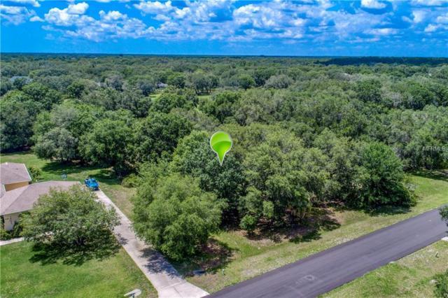 Kingsdown Drive, Sarasota, FL 34240 (MLS #A4404255) :: Lovitch Realty Group, LLC