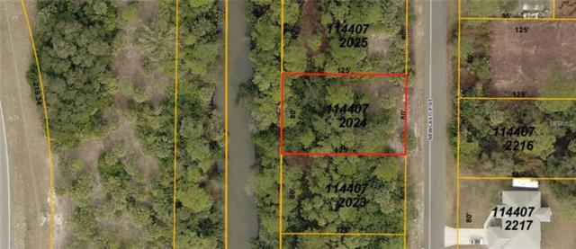 Newcastle Street, North Port, FL 34288 (MLS #A4404728) :: Premium Properties Real Estate Services