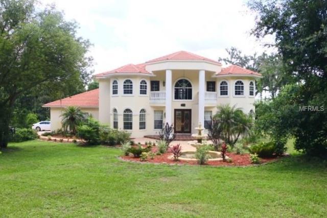 17616 Lake Iola Road, Dade City, FL 33523 (MLS #A4406109) :: Team Bohannon Keller Williams, Tampa Properties