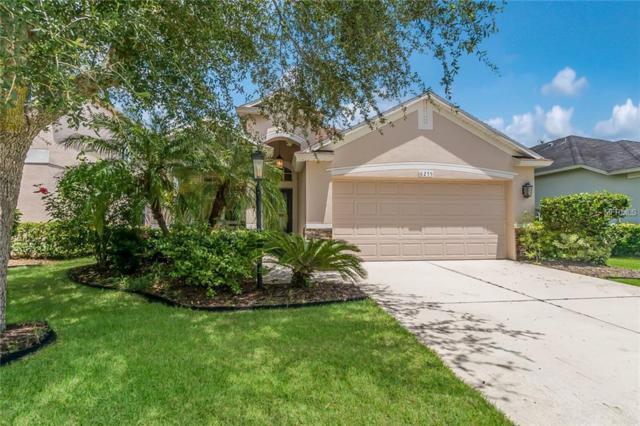 6255 Blue Runner Court, Lakewood Ranch, FL 34202 (MLS #A4406122) :: FL 360 Realty