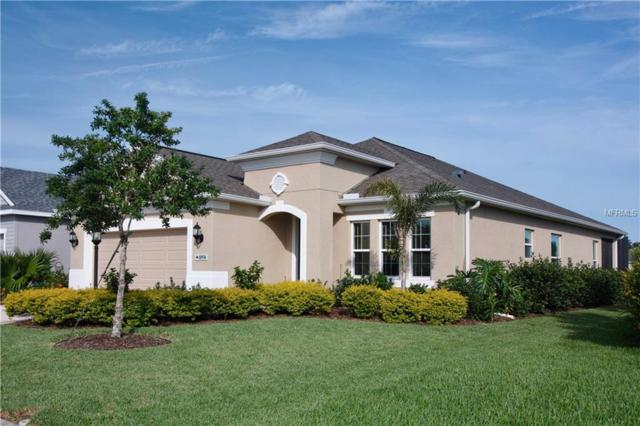 10930 Blue Magnolia Lane, Parrish, FL 34219 (MLS #A4406127) :: Team Pepka