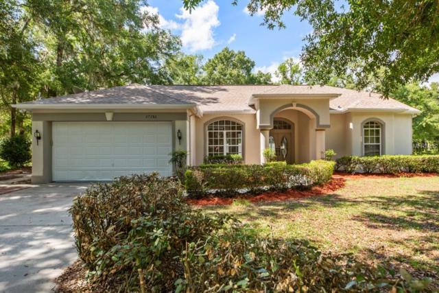 27286 Hiawatha Boulevard, Brooksville, FL 34601 (MLS #A4406196) :: Team Pepka
