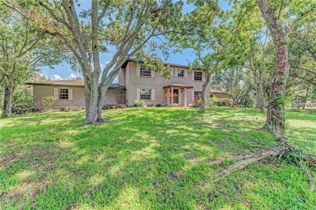 7332 Castle Drive, Sarasota, FL 34240 (MLS #A4406405) :: Griffin Group