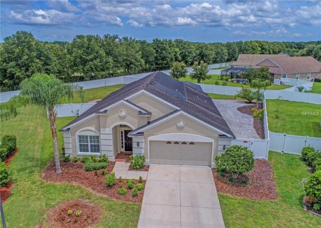 11810 53RD Court E, Parrish, FL 34219 (MLS #A4406520) :: Medway Realty