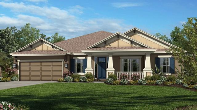 7377 Lancaster Loop, Wesley Chapel, FL 33545 (MLS #A4407710) :: Team Bohannon Keller Williams, Tampa Properties