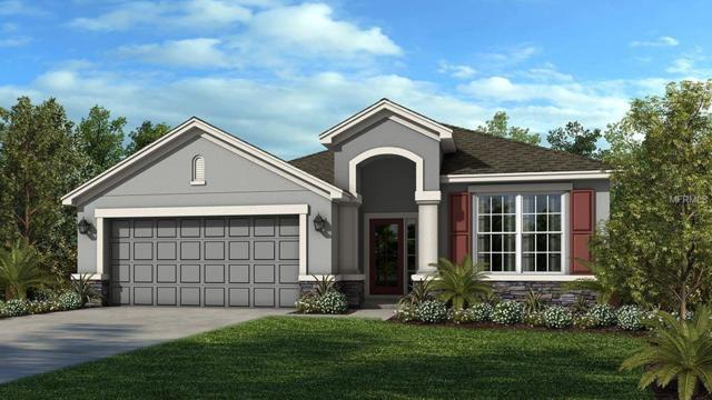 7823 Red Hickory Place, Riverview, FL 33578 (MLS #A4407768) :: The Duncan Duo Team