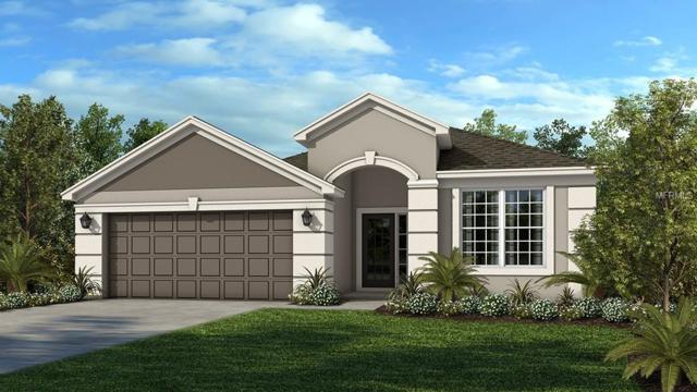 7827 Red Hickory Place, Riverview, FL 33578 (MLS #A4407770) :: The Duncan Duo Team