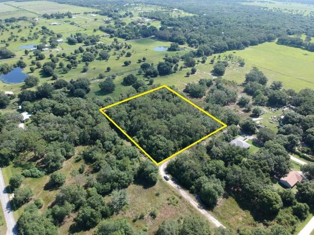 10375 Aurora Street, Myakka City, FL 34251 (MLS #A4407787) :: Premium Properties Real Estate Services