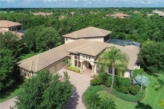 13219 Palmers Creek Terrace, Lakewood Ranch, FL 34202 (MLS #A4407857) :: Team Pepka