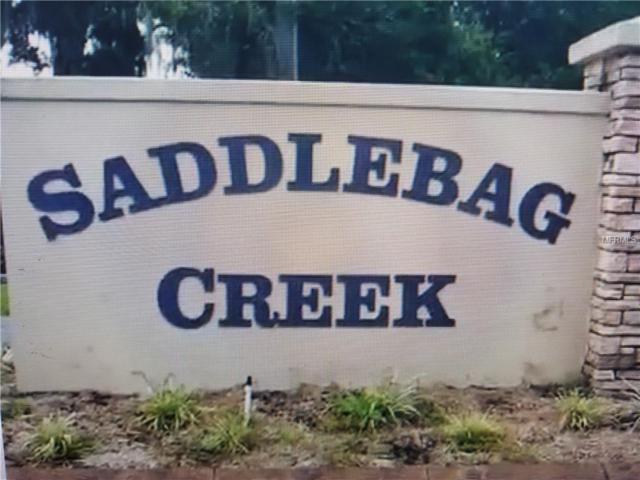 30320 Saddlebag Trail, Myakka City, FL 34251 (MLS #A4407909) :: The Duncan Duo Team
