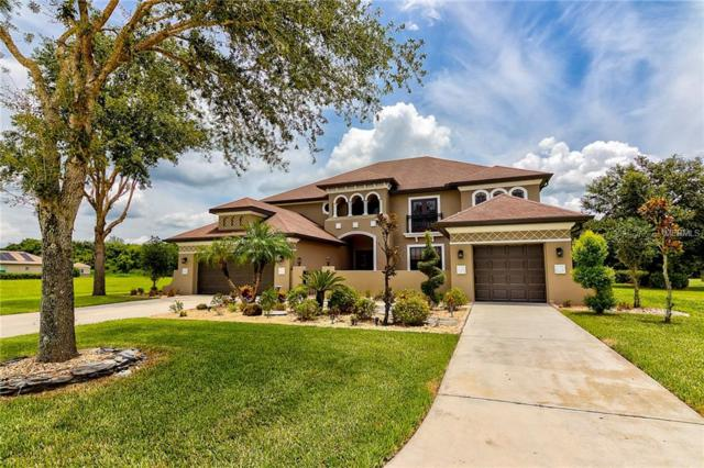 3314 Twin Rivers Trail, Parrish, FL 34219 (MLS #A4407962) :: The Duncan Duo Team