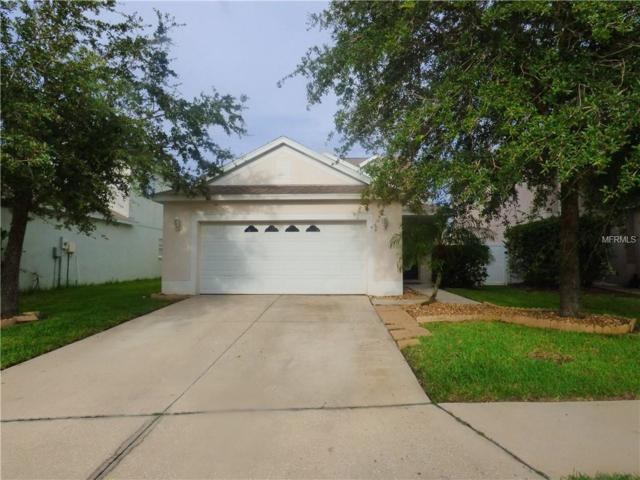 4166 Day Bridge Place, Ellenton, FL 34222 (MLS #A4408067) :: Medway Realty