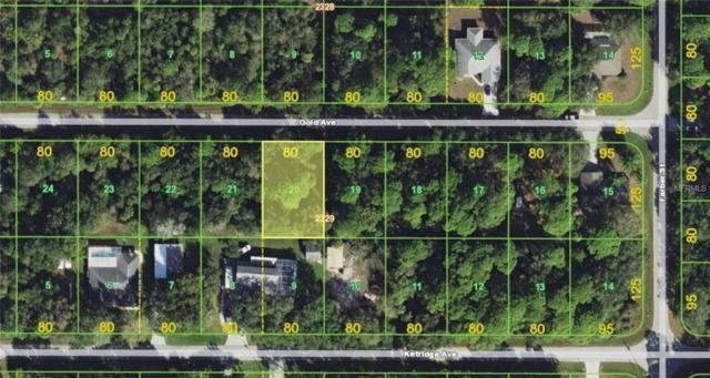 13373 Gold Avenue, Port Charlotte, FL 33953 (MLS #A4408230) :: KELLER WILLIAMS CLASSIC VI
