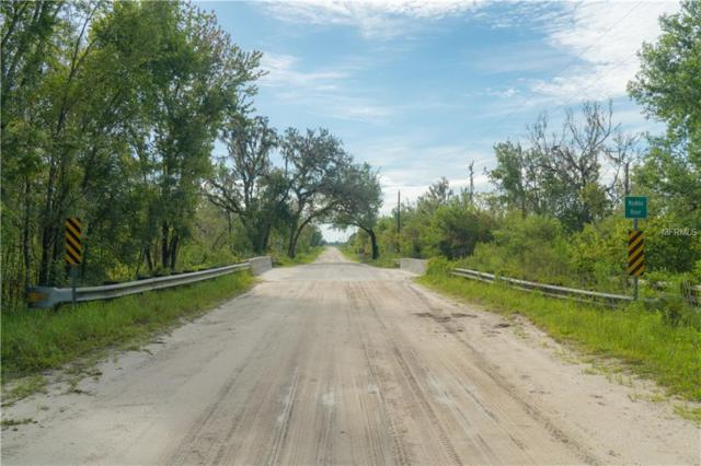 Taylor Rd., Myakka City, FL 34251 (MLS #A4408382) :: Premium Properties Real Estate Services