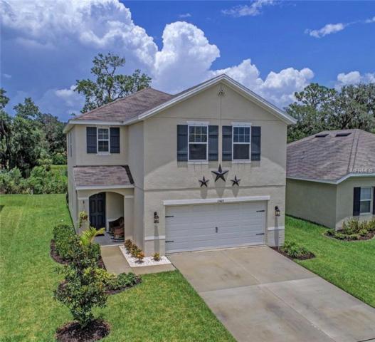 15403 Trinity Fall Way, Bradenton, FL 34212 (MLS #A4408413) :: Team Pepka