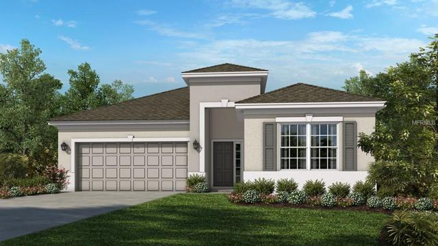 17664 Bright Wheat Drive, Lithia, FL 33547 (MLS #A4408618) :: Griffin Group