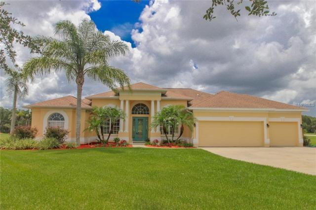 5310 Lake Paddock Circle, Parrish, FL 34219 (MLS #A4408850) :: Mark and Joni Coulter | Better Homes and Gardens