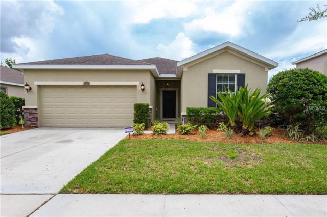 12221 Fairlawn Drive, Riverview, FL 33579 (MLS #A4408875) :: KELLER WILLIAMS CLASSIC VI