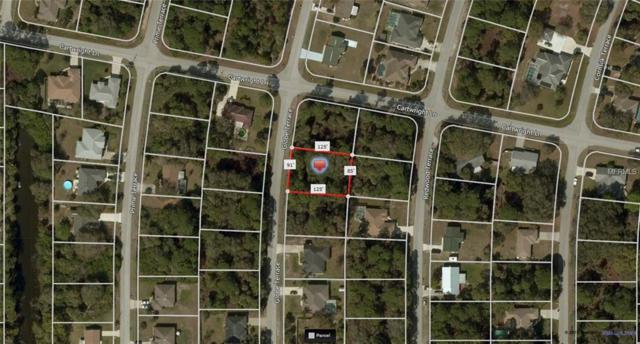 Globe Terrace, North Port, FL 34286 (MLS #A4408919) :: Griffin Group
