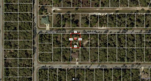 Nymph Avenue, North Port, FL 34288 (MLS #A4408924) :: Medway Realty