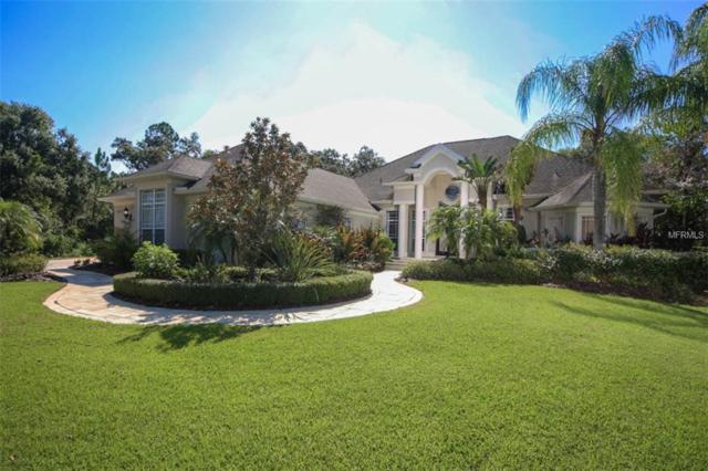 3506 162ND Avenue E, Parrish, FL 34219 (MLS #A4408937) :: The Light Team