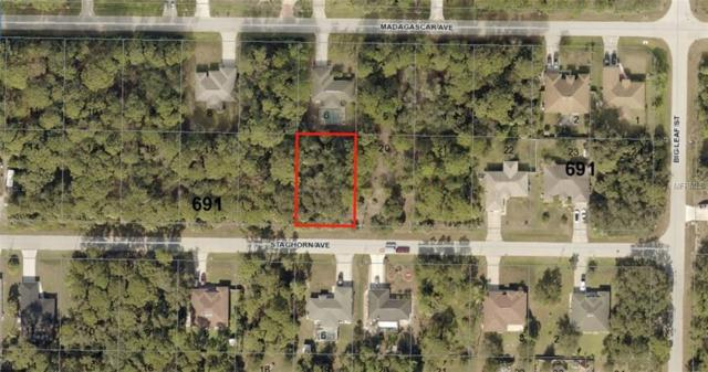 0956069119 Staghorn Avenue, North Port, FL 34286 (MLS #A4409171) :: Griffin Group