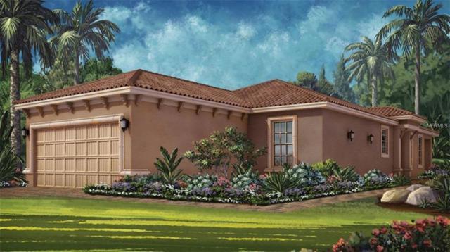20009 Callisto Hill Place, Tampa, FL 33647 (MLS #A4409221) :: Team Bohannon Keller Williams, Tampa Properties