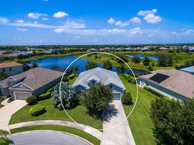 11409 Griffith Park Terrace, Bradenton, FL 34211 (MLS #A4409290) :: Medway Realty