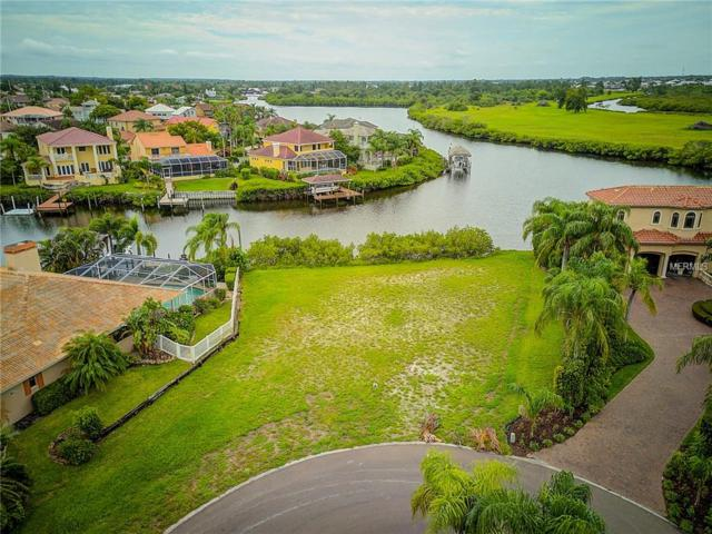 1010 Piano Lane, Apollo Beach, FL 33572 (MLS #A4409321) :: Revolution Real Estate