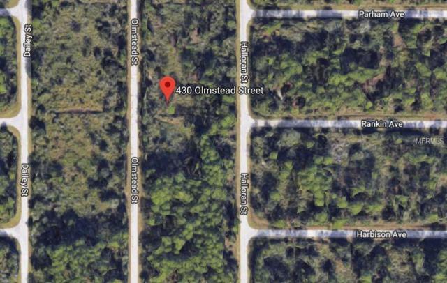 430 Olmstead Street, Port Charlotte, FL 33953 (MLS #A4409841) :: Griffin Group