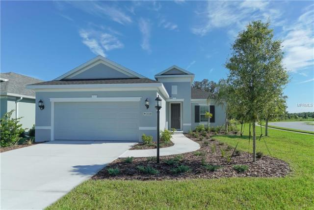 11118 Blue Magnolia Lane, Parrish, FL 34219 (MLS #A4409963) :: TeamWorks WorldWide