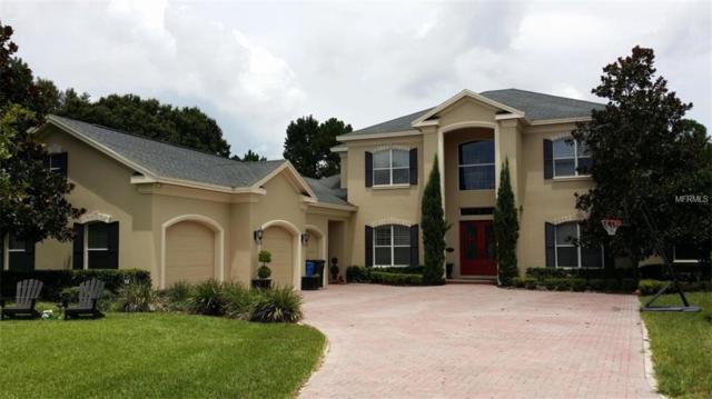 8509 Kentucky Derby Drive, Odessa, FL 33556 (MLS #A4410052) :: Team Bohannon Keller Williams, Tampa Properties