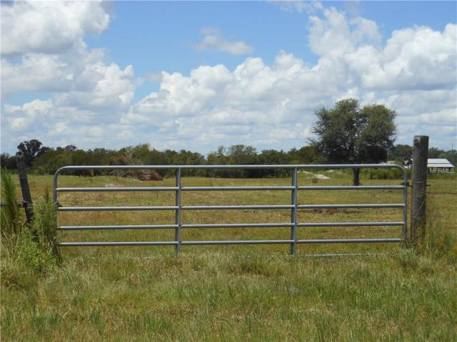 Long Rd, Ona, FL 33865 (MLS #A4410240) :: Mark and Joni Coulter | Better Homes and Gardens