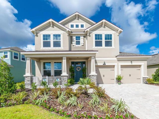 5210 Horizon Cove, Bradenton, FL 34211 (MLS #A4410391) :: Griffin Group