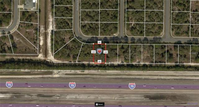 Chouncey Avenue, North Port, FL 34291 (MLS #A4410445) :: Griffin Group
