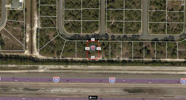 Chouncey Avenue, North Port, FL 34291 (MLS #A4410495) :: Griffin Group