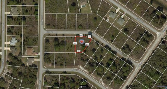 Simca Lane, North Port, FL 34291 (MLS #A4410541) :: The Duncan Duo Team