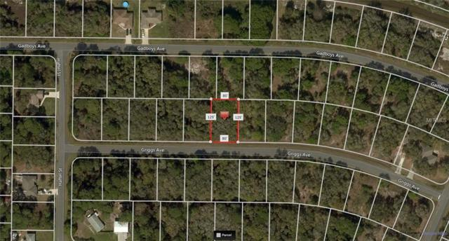 Griggs Avenue, North Port, FL 34291 (MLS #A4410551) :: Godwin Realty Group