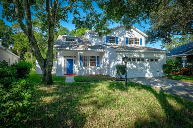 12254 Hollybush Terrace, Lakewood Ranch, FL 34202 (MLS #A4410641) :: McConnell and Associates