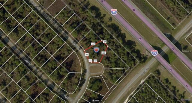 Custer Circle, North Port, FL 34288 (MLS #A4410716) :: Godwin Realty Group