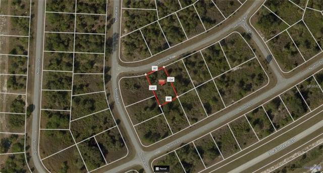 Overlook Road, North Port, FL 34288 (MLS #A4410737) :: Premium Properties Real Estate Services
