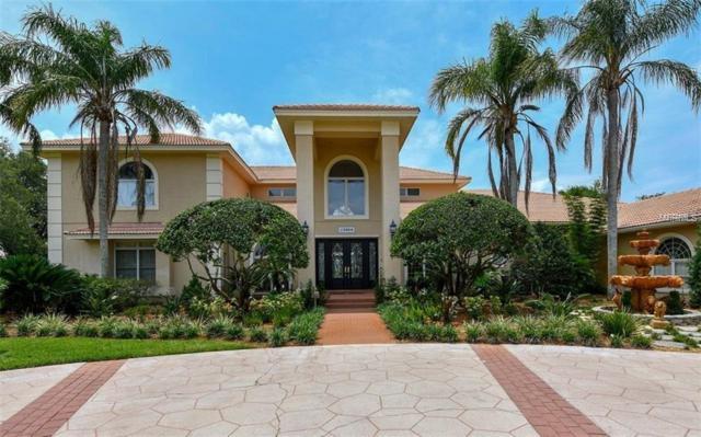 17808 Willow Lake Drive, Odessa, FL 33556 (MLS #A4410754) :: Team Bohannon Keller Williams, Tampa Properties
