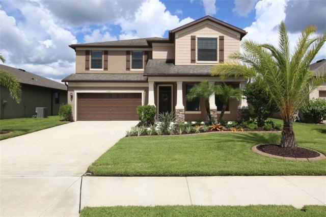 5520 105TH Terrace E, Parrish, FL 34219 (MLS #A4410839) :: TeamWorks WorldWide
