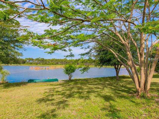 9230 Falcon Court, Venice, FL 34293 (MLS #A4411019) :: Griffin Group