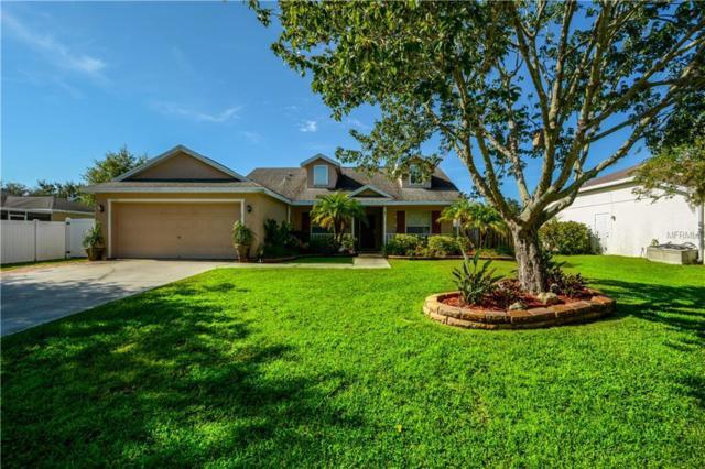 11764 Shirburn Circle, Parrish, FL 34219 (MLS #A4411164) :: TeamWorks WorldWide